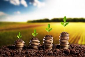 Ministério da Agricultura anuncia apoio de 11,1M€ a agricultores e PME